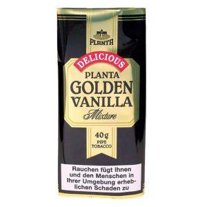 Planta Golden Vainilla